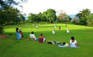 Football-Great-Lawn