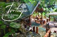Organic Lounge & Bar