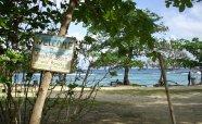 Winnifred Beach (14)