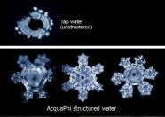 water-crystal-masaru-emoto-test 2016