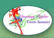 Courtney Taylor Private Tours logo
