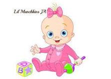 Lil Munchkin Jamaica logo