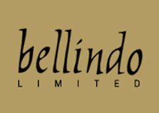 Bellindo Ltd logo