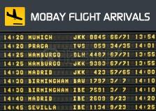Montego Bay Flight Arrivals logo