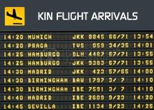Kingston Flight Arrivals logo
