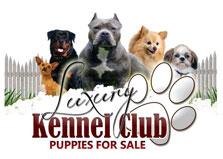 Dog Breeders Jamaica Ltd. logo