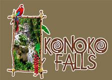 Konoko Falls logo