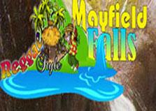 Reggae Style Mayfield Falls logo