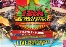 Stepping High logo