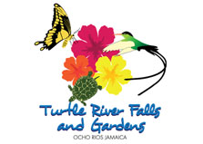 Turtle River Falls and Gardens logo