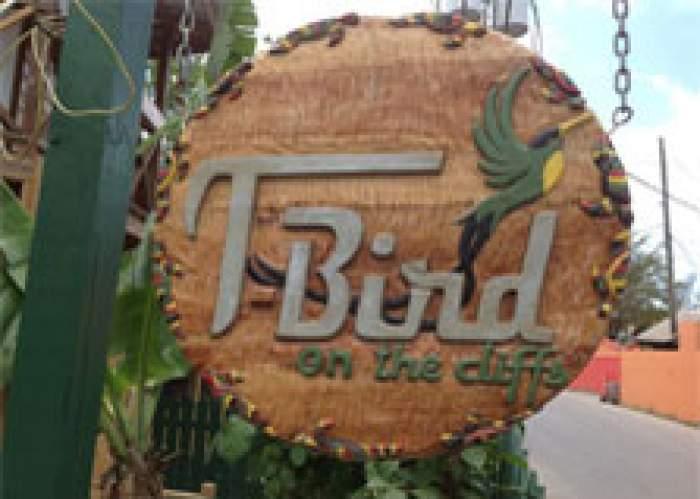 T-Bird on the Cliffs logo