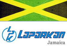 Laparkan (Jamaica) Ltd logo