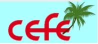 CEFE Caribbean logo