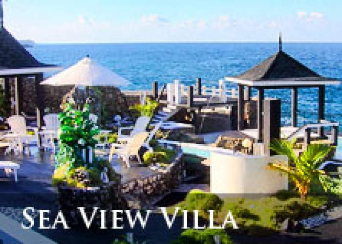 (876)Sea View Villa logo