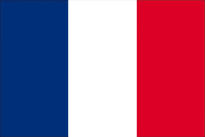 Embassy of France logo