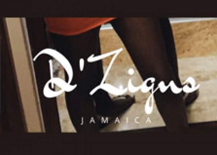 D'Zigns Jamaica logo