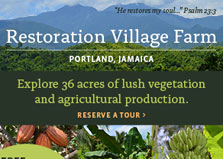 Restoration Village Farm logo