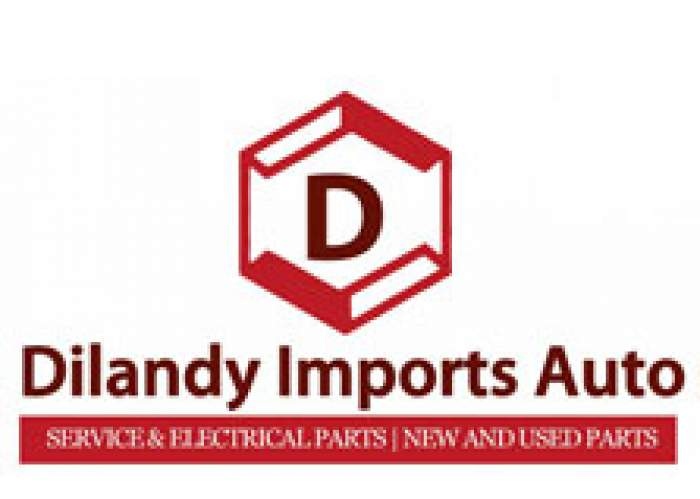 Dilandy Imports Auto Parts logo