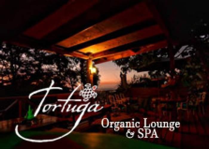Tortuga Organic Lounge logo