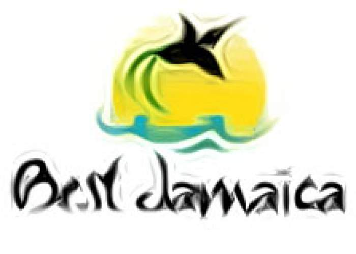 Best Jamaica Airport Taxi and Tours logo