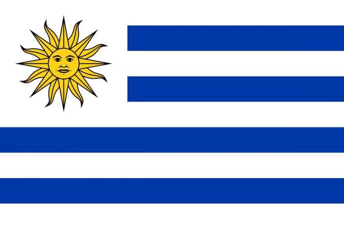 Consulate of Uruguay logo