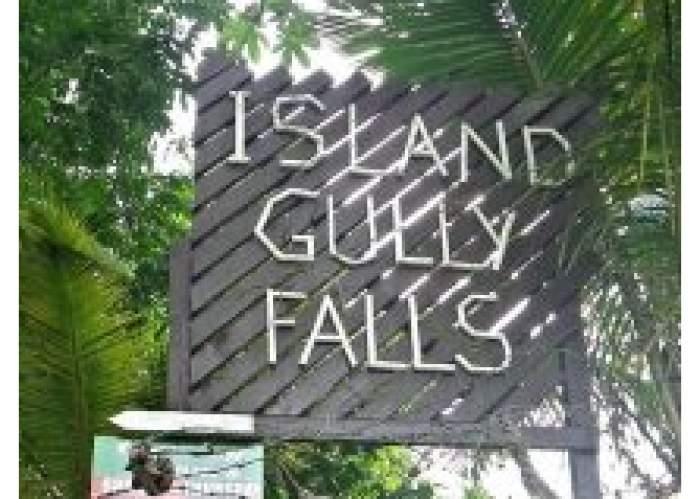 Island Gully Falls logo