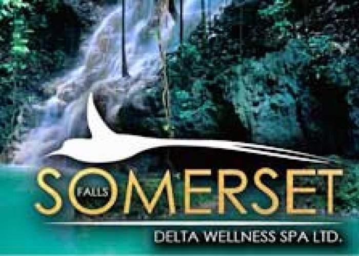 Somerset Falls logo