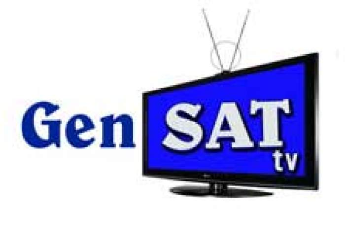 General Satelite Network Co Ltd logo