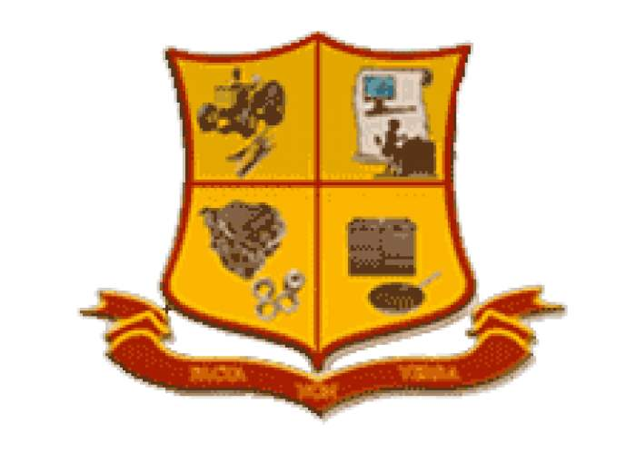Dinthill Technical High logo