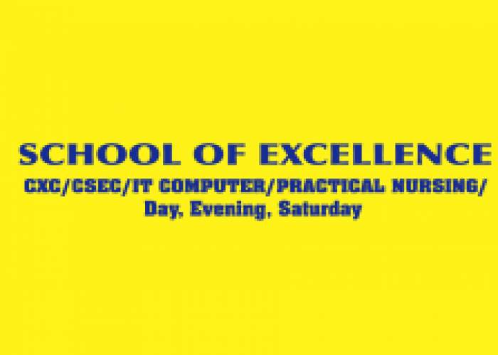 School Of Excellence logo