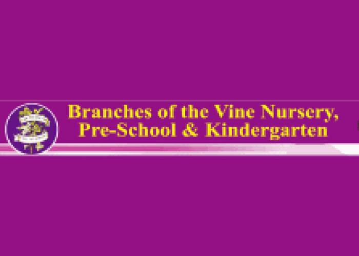 Branches Of The Vine Nursery & Preschool logo