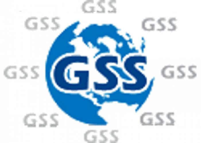 Global Systems Source Ltd logo