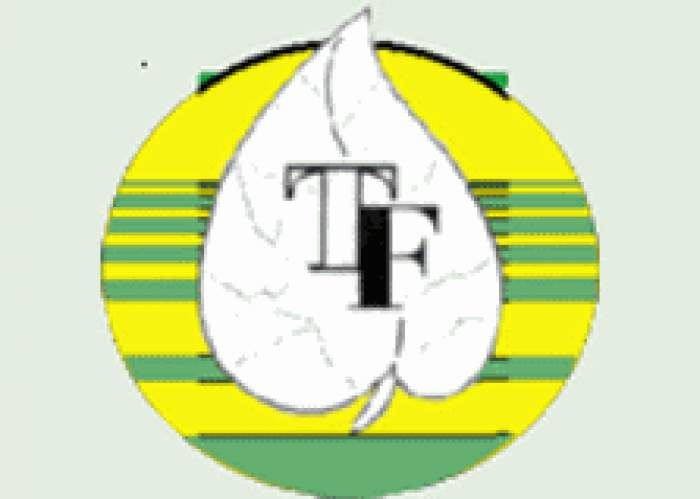 Tropical Foliage Ltd logo