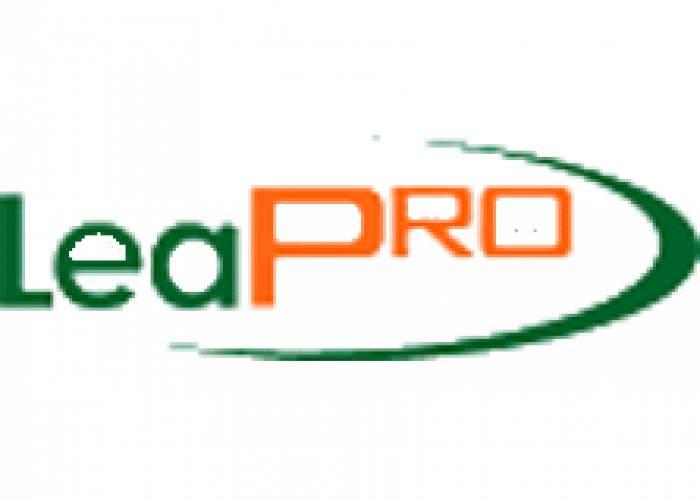 Leapro Group Ltd logo