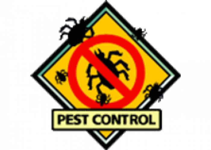 Ipex Pest Management Servs Ltd logo