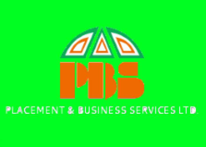 Placement & Business Servs Ltd logo