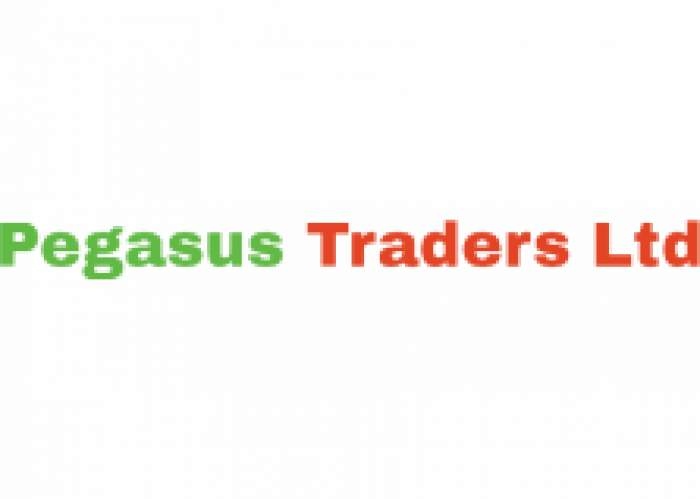 Pegasus Traders Ltd logo