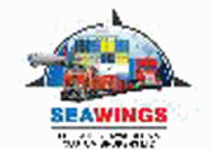 Seawings Freight Forwarders & Custom Brokers logo