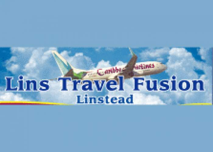 Lins Travel Fusion logo