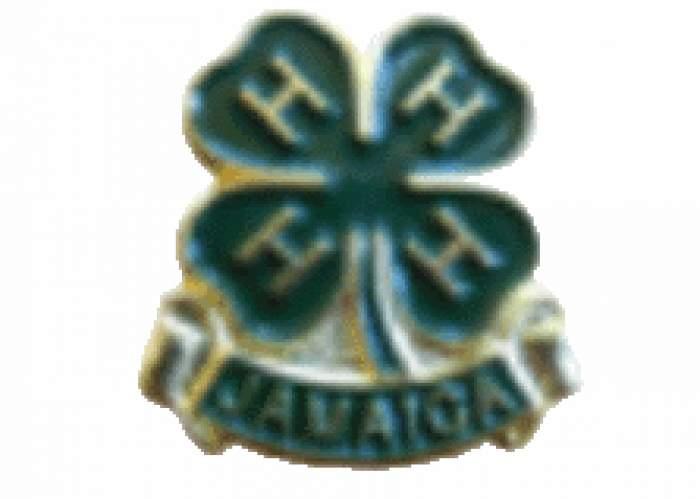 Jamaica 4-H Clubs logo