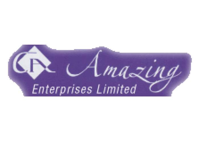 Amazing Enterprises Ltd logo