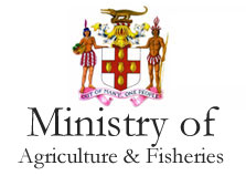 Ministry of Agriculture & Fisheries logo