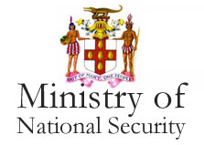 Ministry of National Security logo