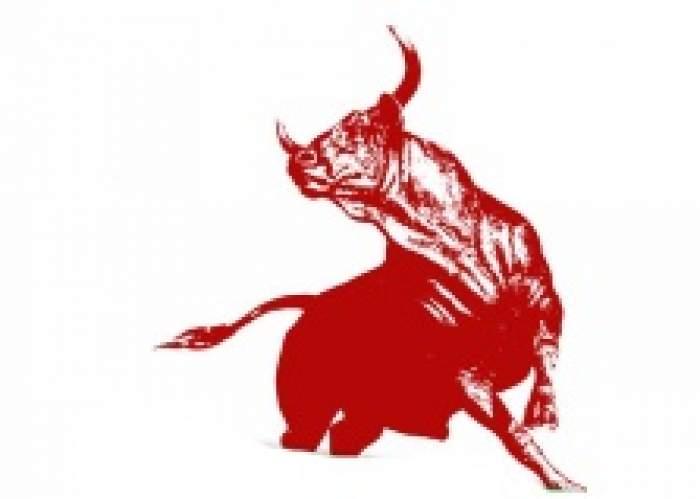 Bull Investments Ltd logo