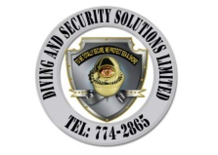Diving And Security Solutions Ltd logo