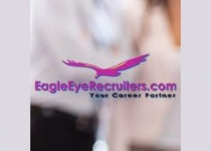 Eagleeye Recruiting & Career Services logo