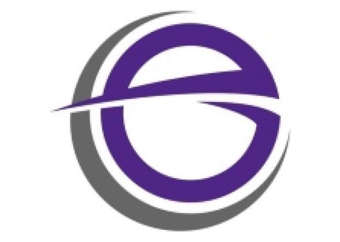 Enigma Entity logo
