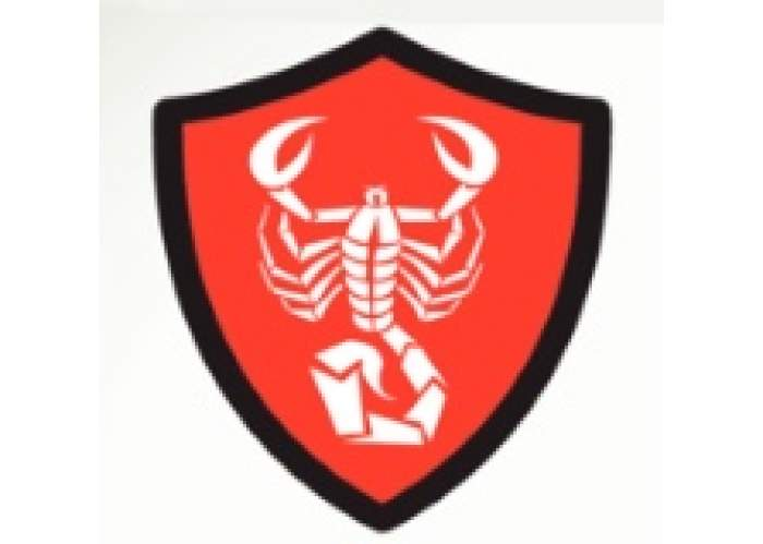 Sting Protection Service Ltd logo