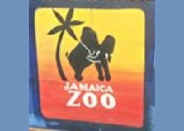 Jamaica Zoo logo