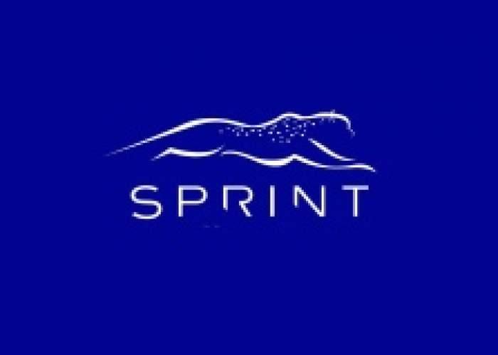Sprint Financial Services Jamaica Limited logo